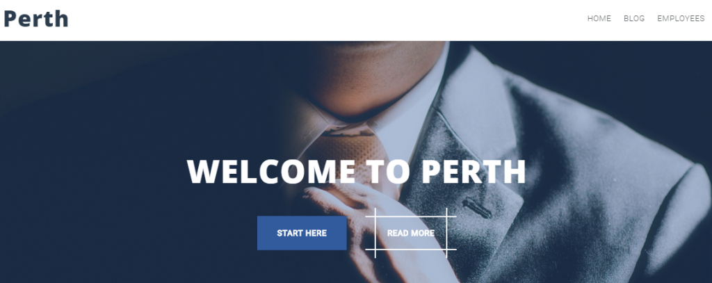 Best 5+ Free WordPress Themes For All Types Of Business